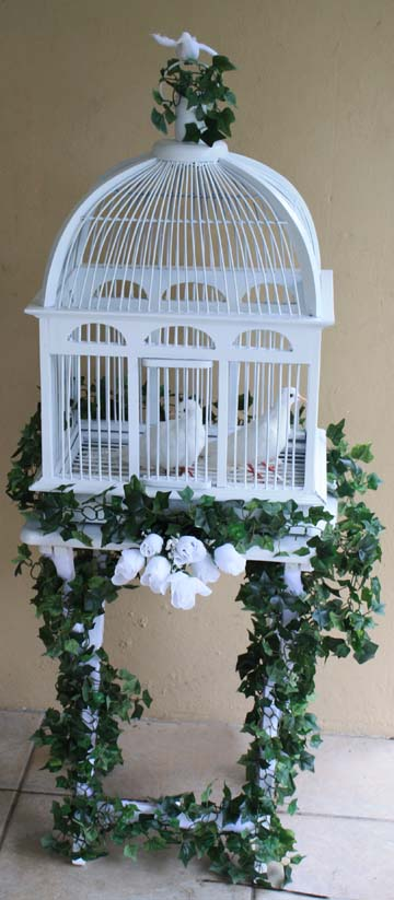 Wedding dove display cage